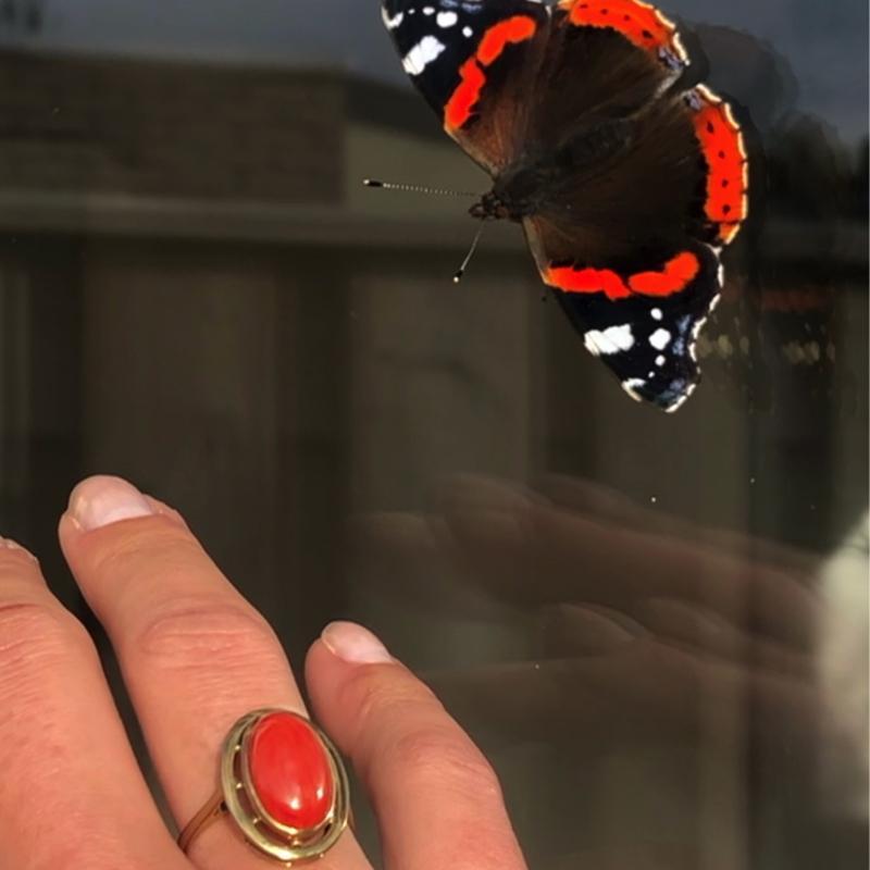 ring met koraal en vlinder